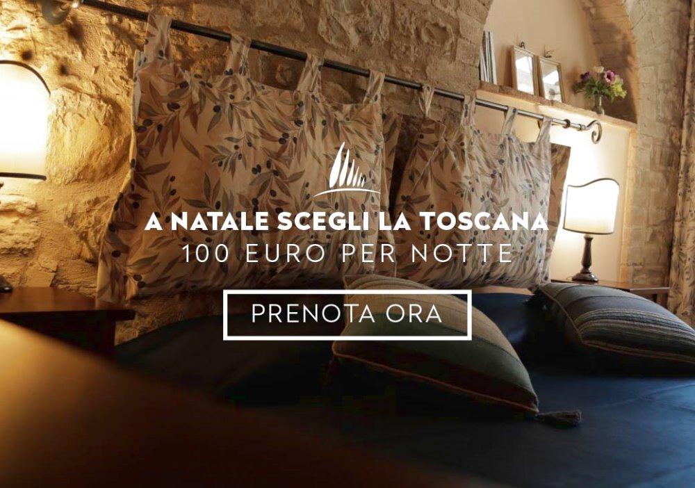 Offerta Natale e san Silvestro in Toscana Appartamento da 100 euro a Notte